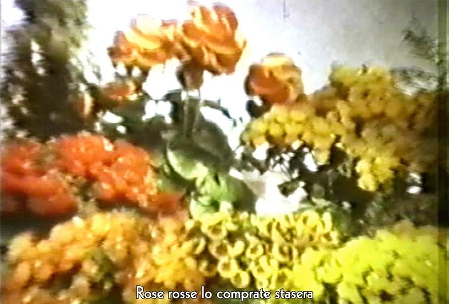 http://davidjamesroberts.com/files/gimgs/th-43_davidroberts_gran_13.jpg
