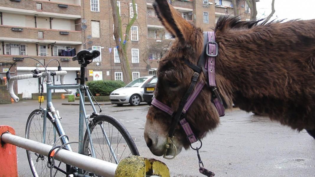 http://davidjamesroberts.com/files/gimgs/th-46_davidroberts_procession_13.jpg
